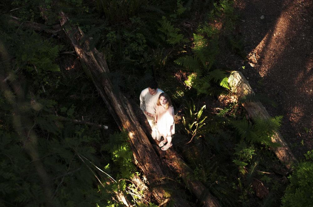 UBC_FOREST-17.jpg