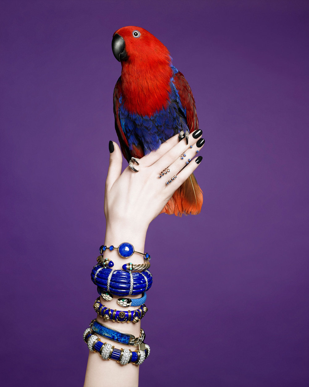 Flying Colors Cobalt-hued enamel, brilliant sapphires and polished lapis are the foundations for some of our favorite summer bangles (and rings!) Photography Christine Blackburne Styling Sydney Wasserman