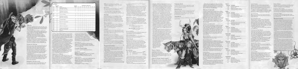 Player's Handbook, Pages 64-69