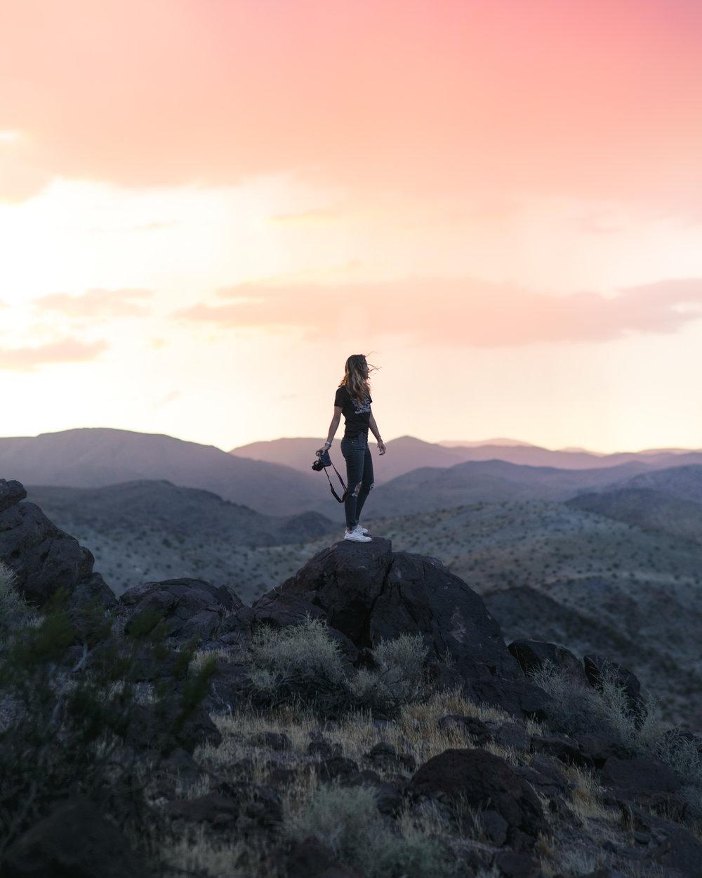 Final Fox Sunset.jpg