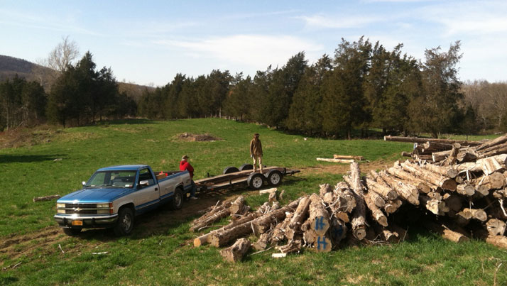Logs-Lumber_NYH.jpg