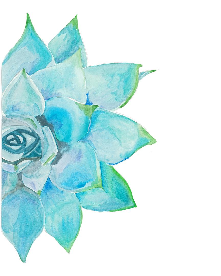 Blue Succulent By Melissa Lichtenberger Print Collaborative District