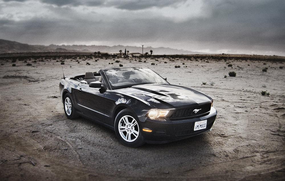 Mustang / George McLeod