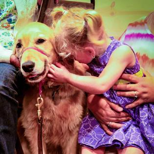 Sophie Z. Giveaway | 8.24.16