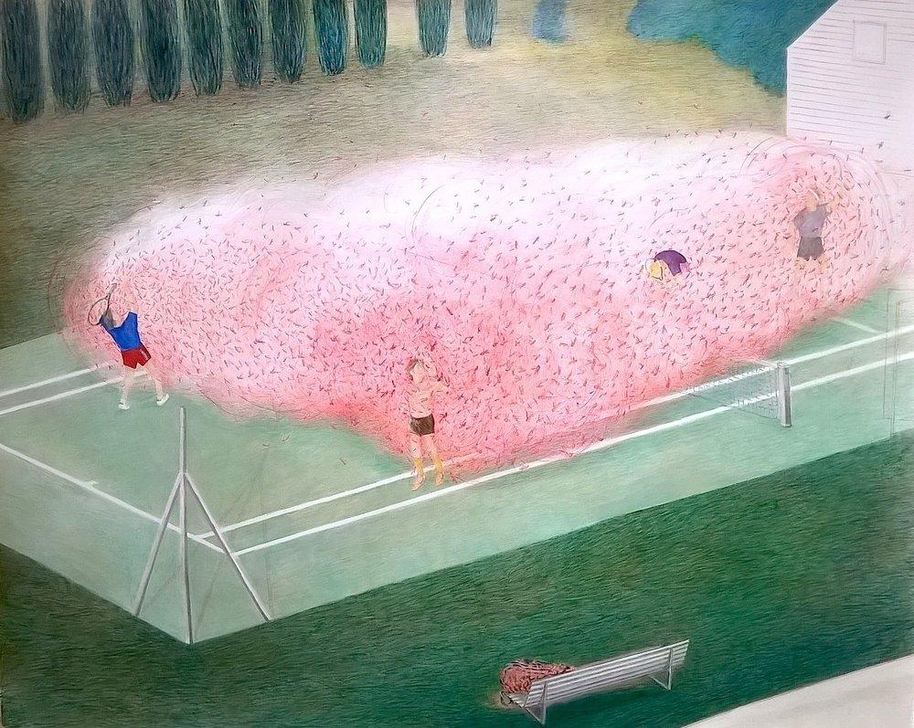 Bianca Argimon, Locust, 2015, pencil on paper, 115x85cm