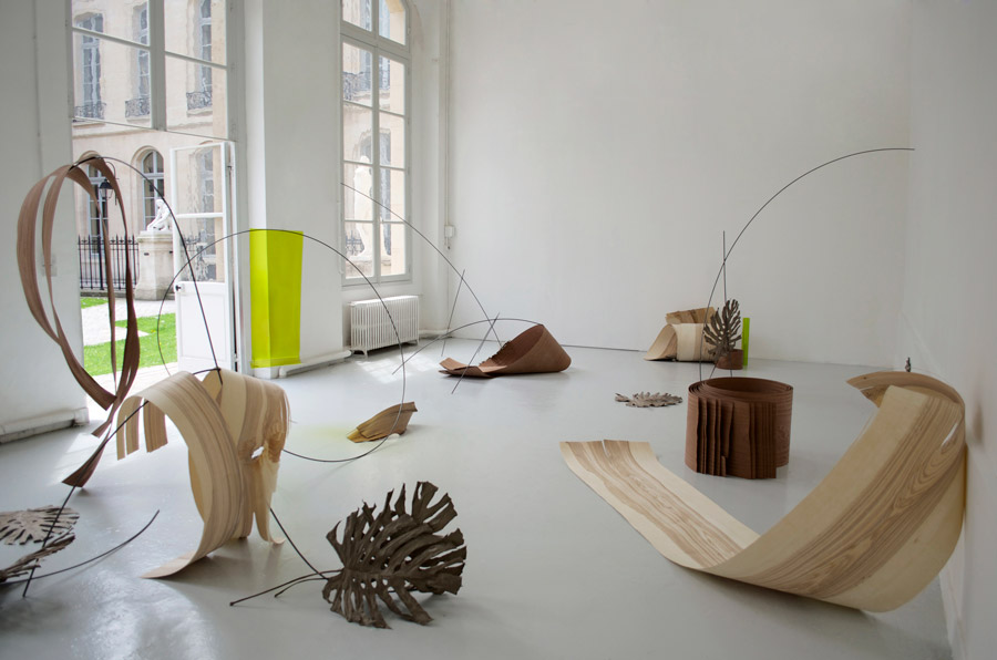 Célia Gondol  Songlines  2014 Sapelli and ash veneer, dry leaves Monstera deliciosa, steel, gelatine Variable dimensions
