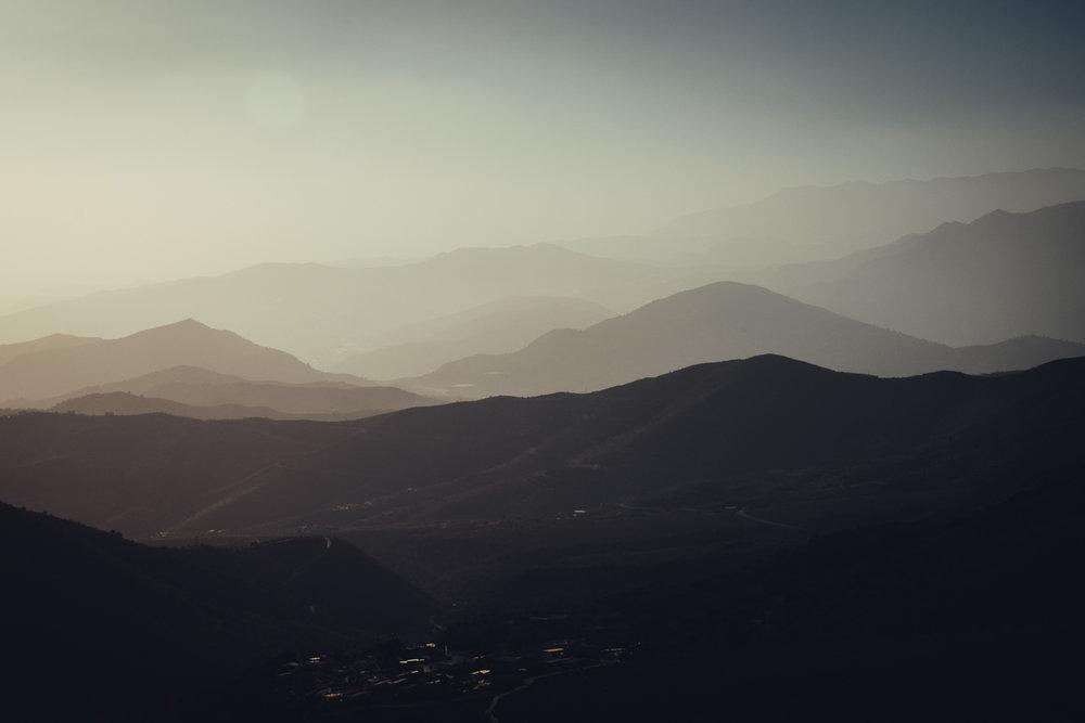 Dorija Apple Parsley_Mt.Lújar-6361.jpg