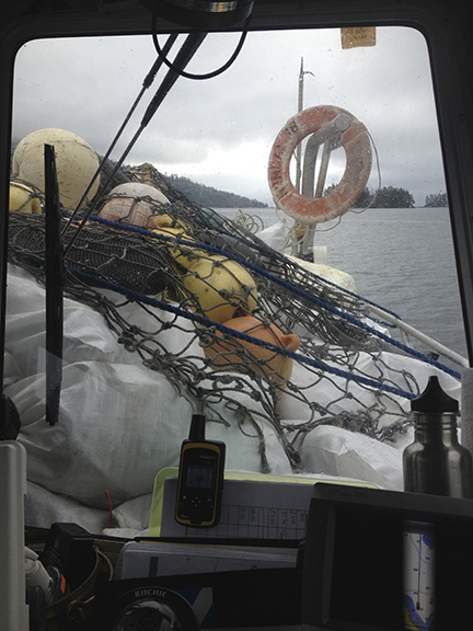 Just enough visibility over the debris load to see where we're going!
