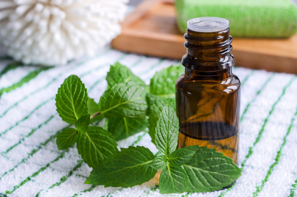 A bottle of peppermint essential oil.