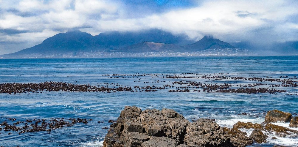 The view of Cape Town and Table Mountain from Robben Island. Unfortunately it was a cloudy day, but you can almost see Lion Head (right) and Table Mountain (center).