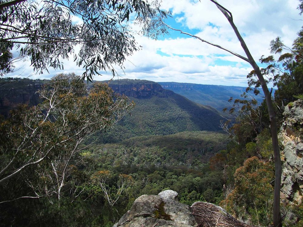 View of the Blue Mountains - How to See Sydney in 72 Hours Part 3 - The Kenney Way