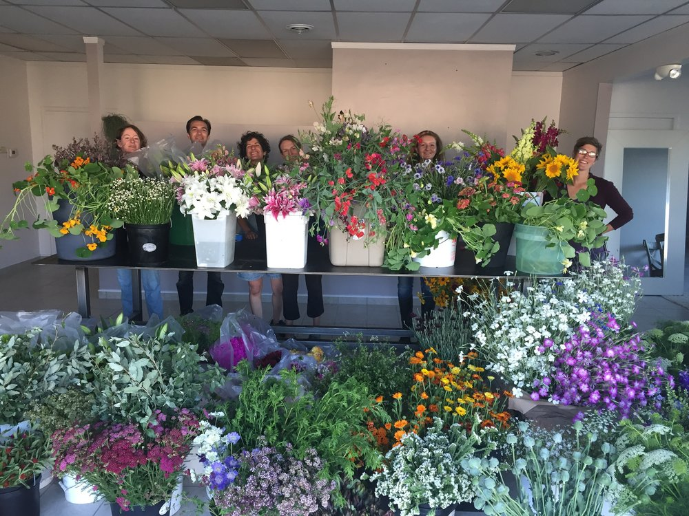 Michigan Flower Growers' Cooperative Opening Day 2017