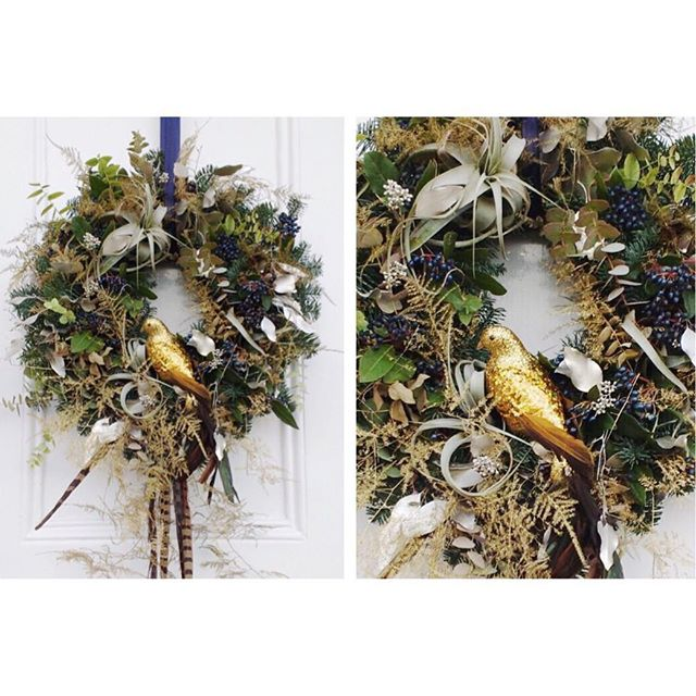 Finally getting a chance to do my own wreaths after a busy start to Christmas! My fave so far - for my wonderful Ma and Pa 🐦❄️🌿 Complete with air plants, pheasant feathers, asparagus fern & eucalyptus - yum!! (Thanks for the photo dad - shame my OCD won't stop me looking at the rogue feather sticking out...!!!)