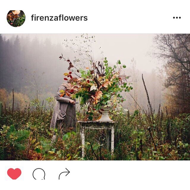 Looking through everything I've screenshoted (is that even a word!?) for inspiration over the past year & reckon this pic by @firenzaflowers my favourite post of 2016, also pretty fitting considering the misty weather at the moment!