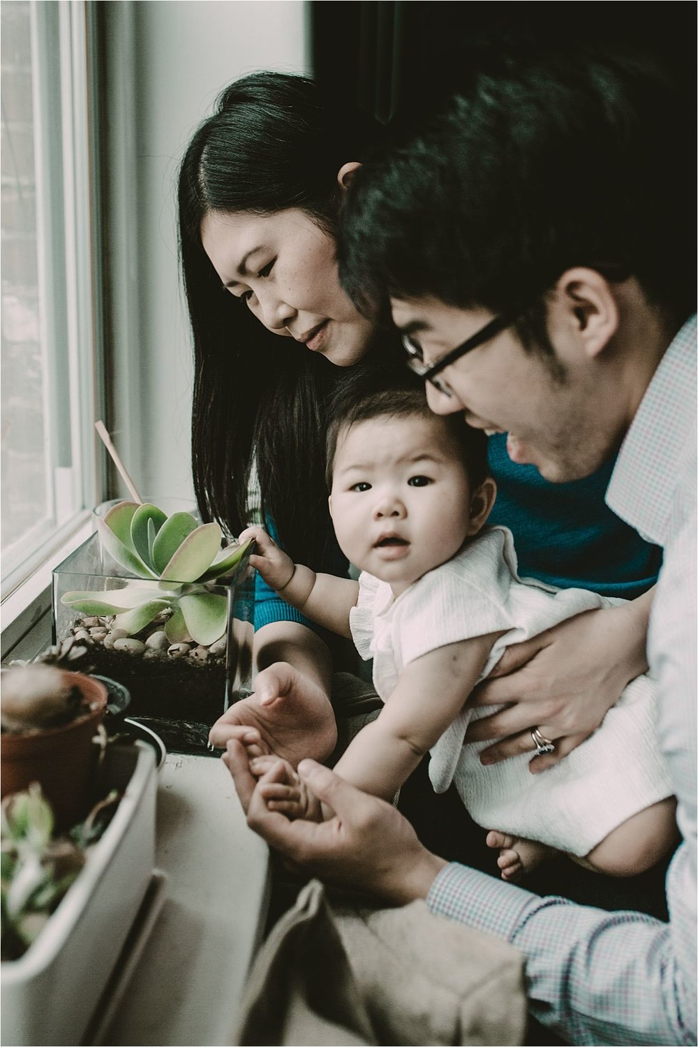 nyc family and newborn photographer baby girl plays with living room plants at window