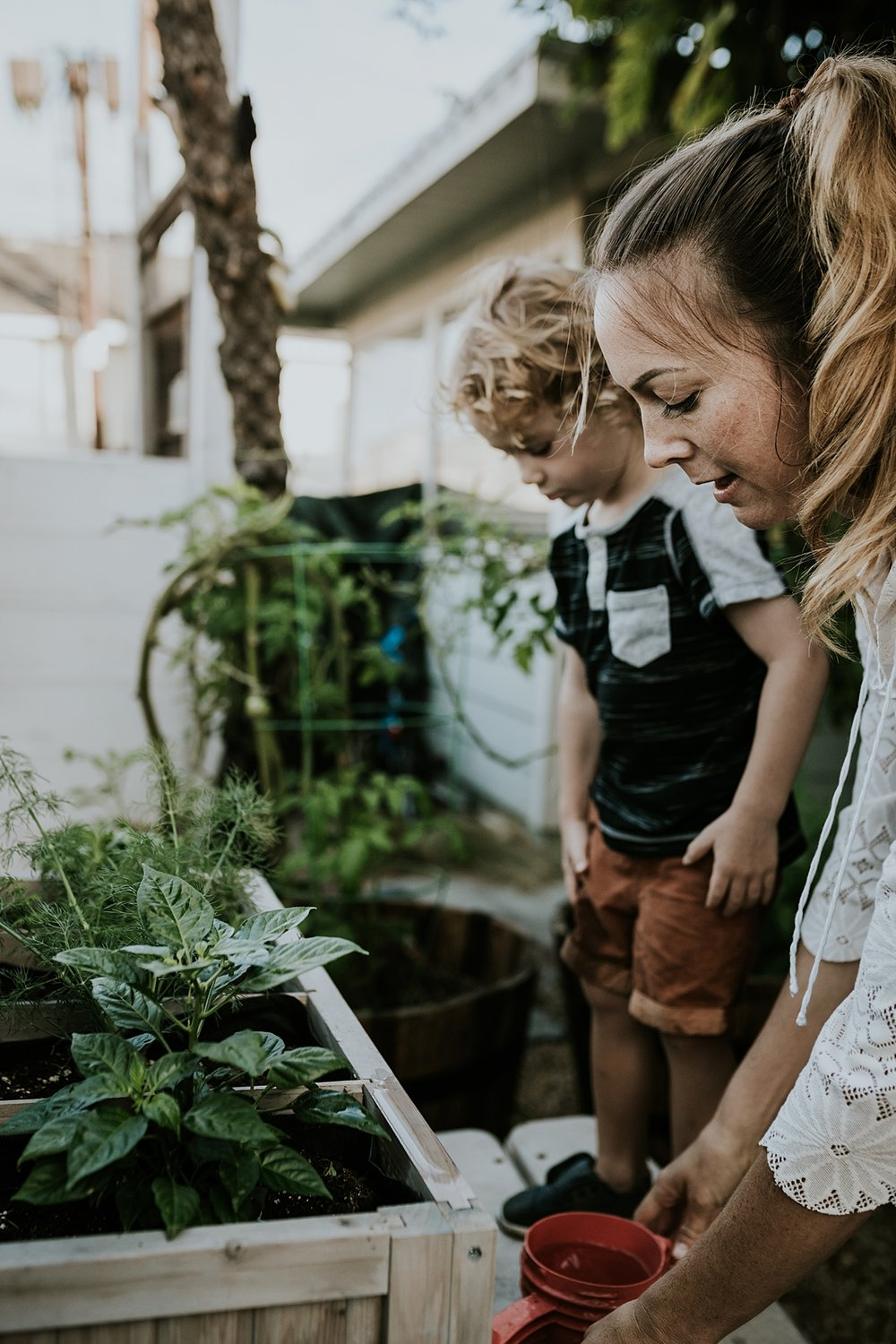Orange County family photographer. Photo of young curly blonde haired boy and his mama watering plants in their front yard during documentary photo session with Krystil McDowall Photography