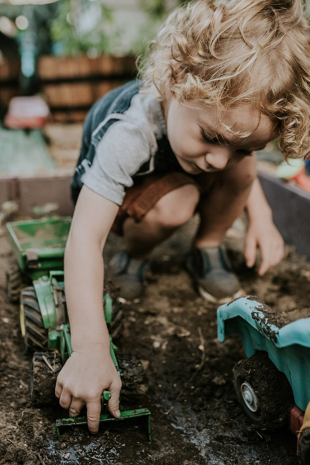 Orange County family photographer. Photo of young curly blonde haired boy playing with his trucks in his front yard garden during documentary photo session with Krystil McDowall Photography