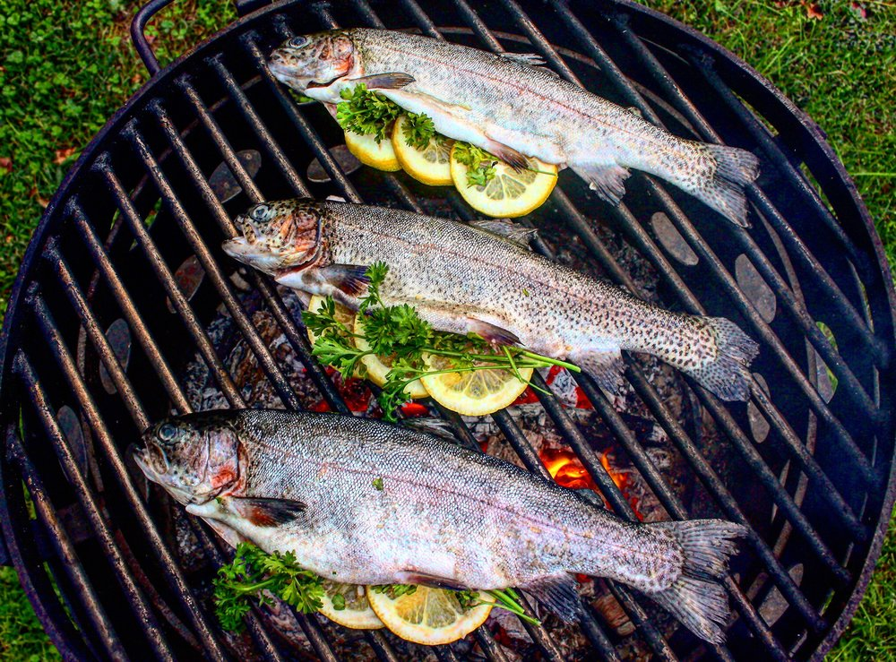 Trout are stuffed and cooking over the fire.