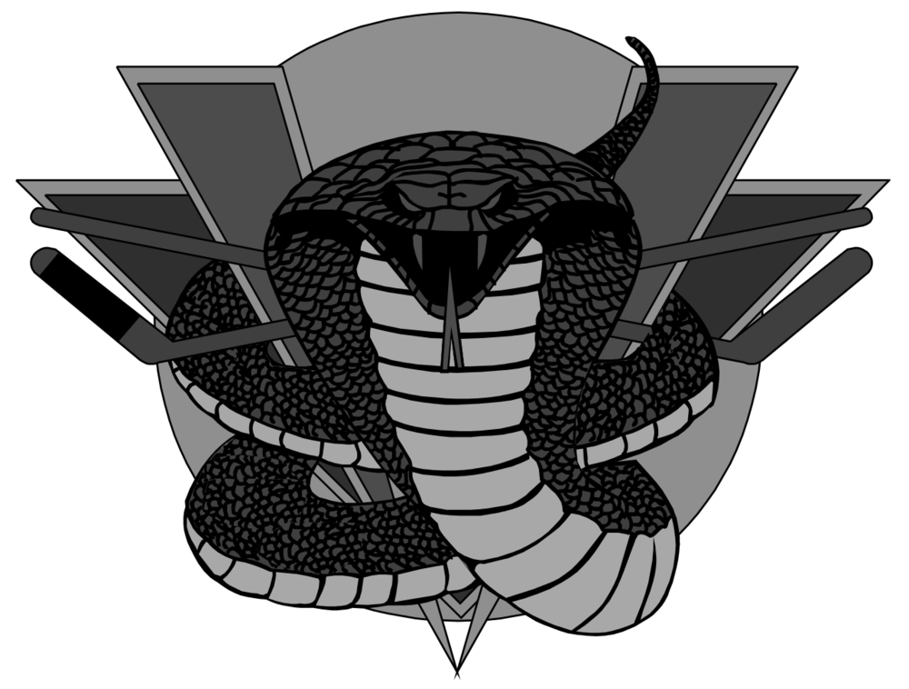 zVernon_Vipers_logo.png
