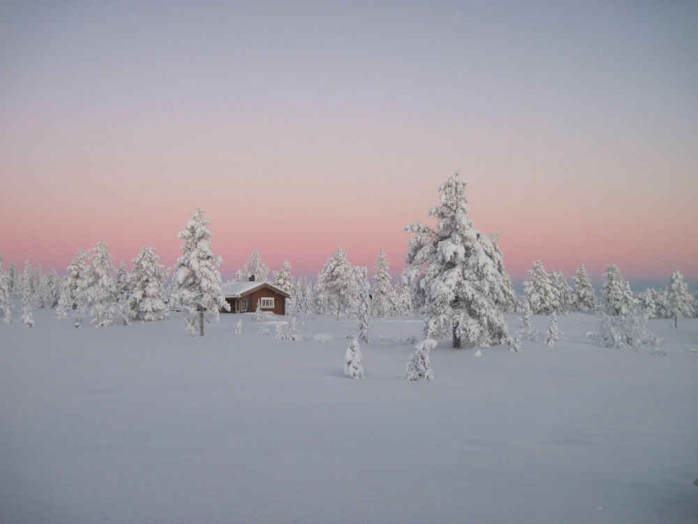 Log-cabin-in-a-Norwegian-boreal-forest.jpg