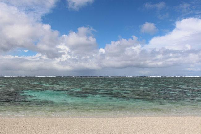 Mister Weekender_Lady Elliot Island