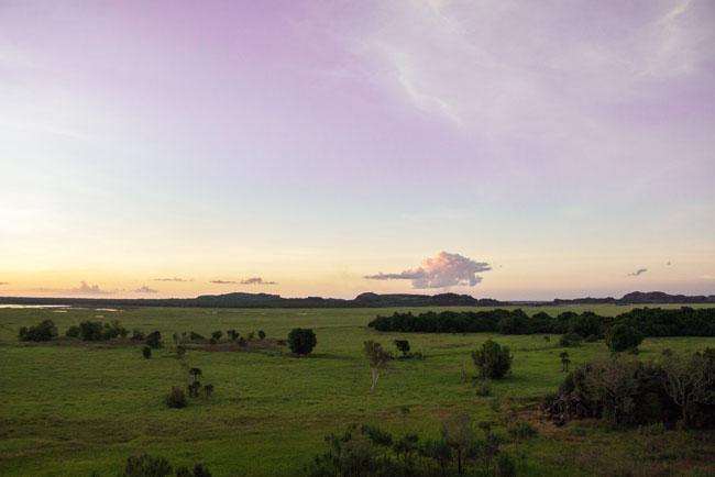 Mister Weekender, Urbirr Kakadu National Park