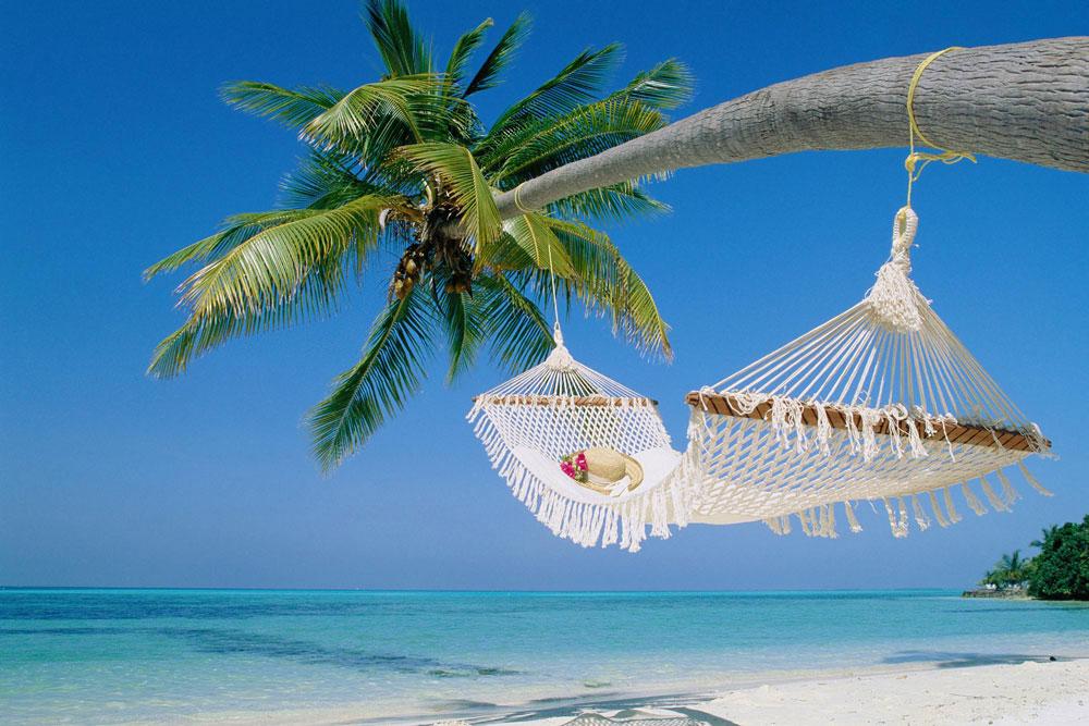 hammock-on-palmEDIT.jpg