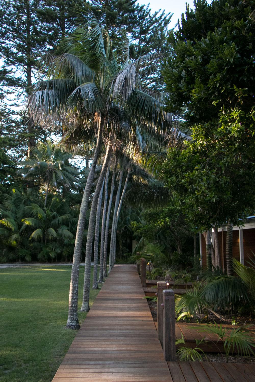 Mister Weekender_Lord Howe Island 24