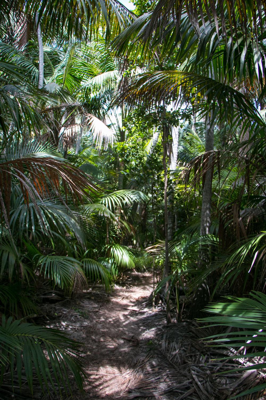 Mister Weekender_Lord Howe Island_Jaharn Giles_7