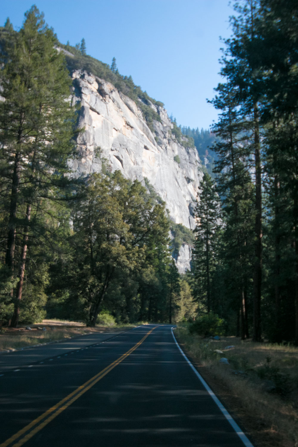 Driving through Yosemite Valley