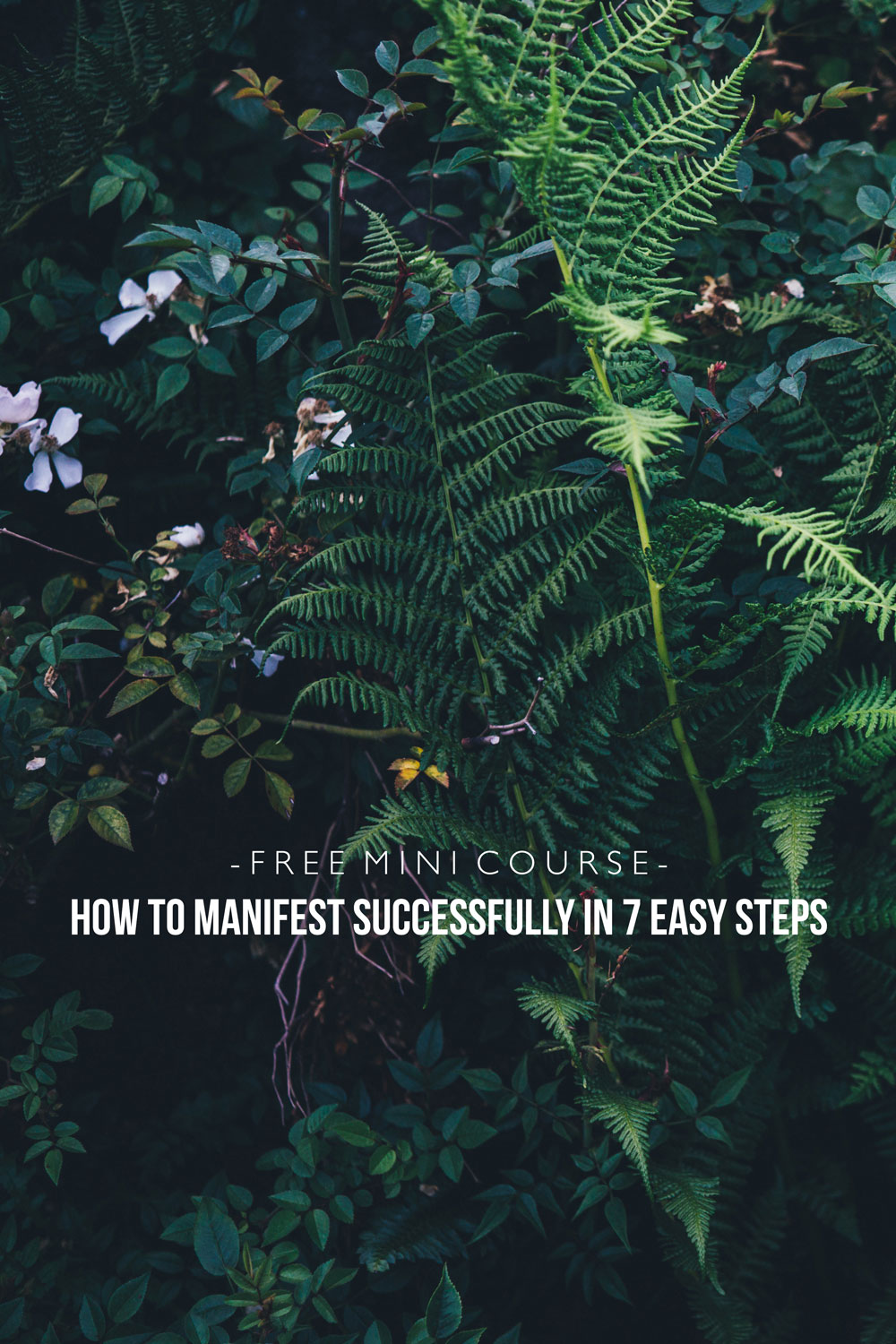How To Manifest Pin It