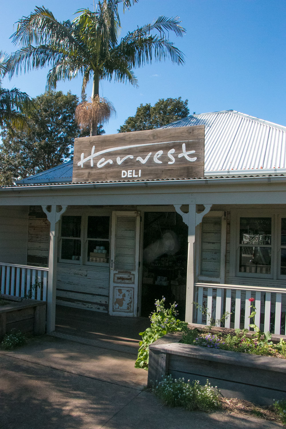 Harvest-Deli-Byron-Bay-Travel-Guide