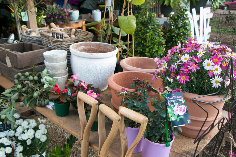 The-Farm-Flower-Shop-Byron-Bay-Travel-Guide