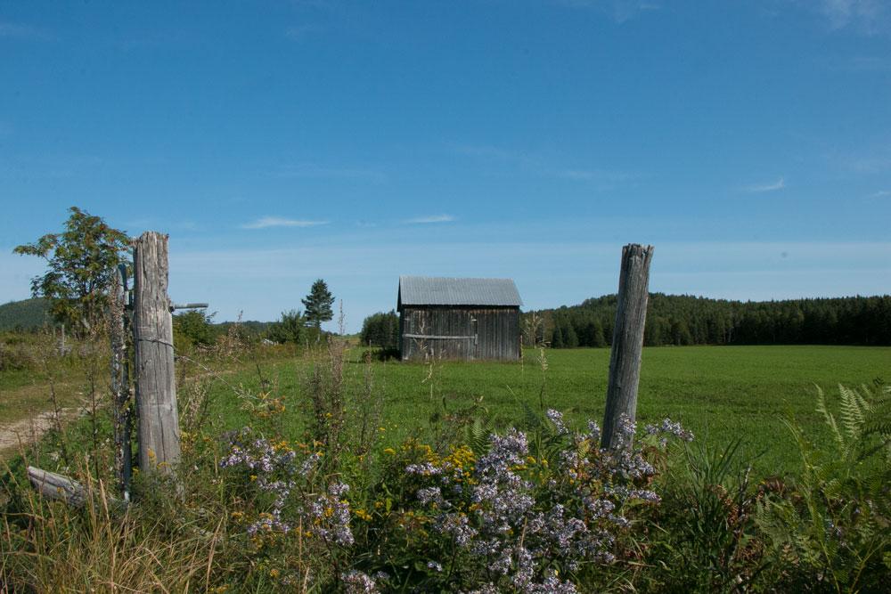 Cabin in Charlevoix region