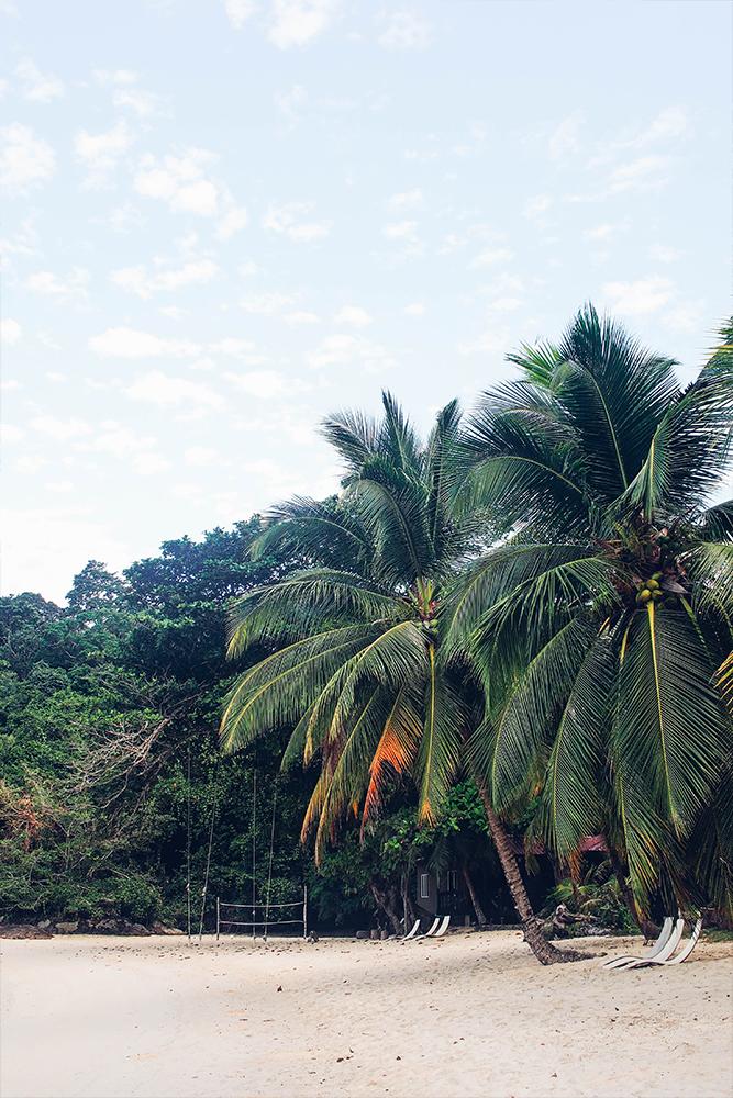 a-quick-guide-to-TanjongJara-in-malaysia