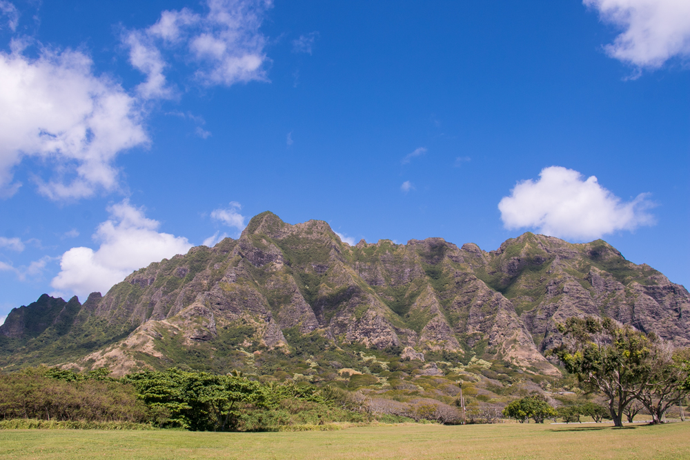 Oahu In Pictures