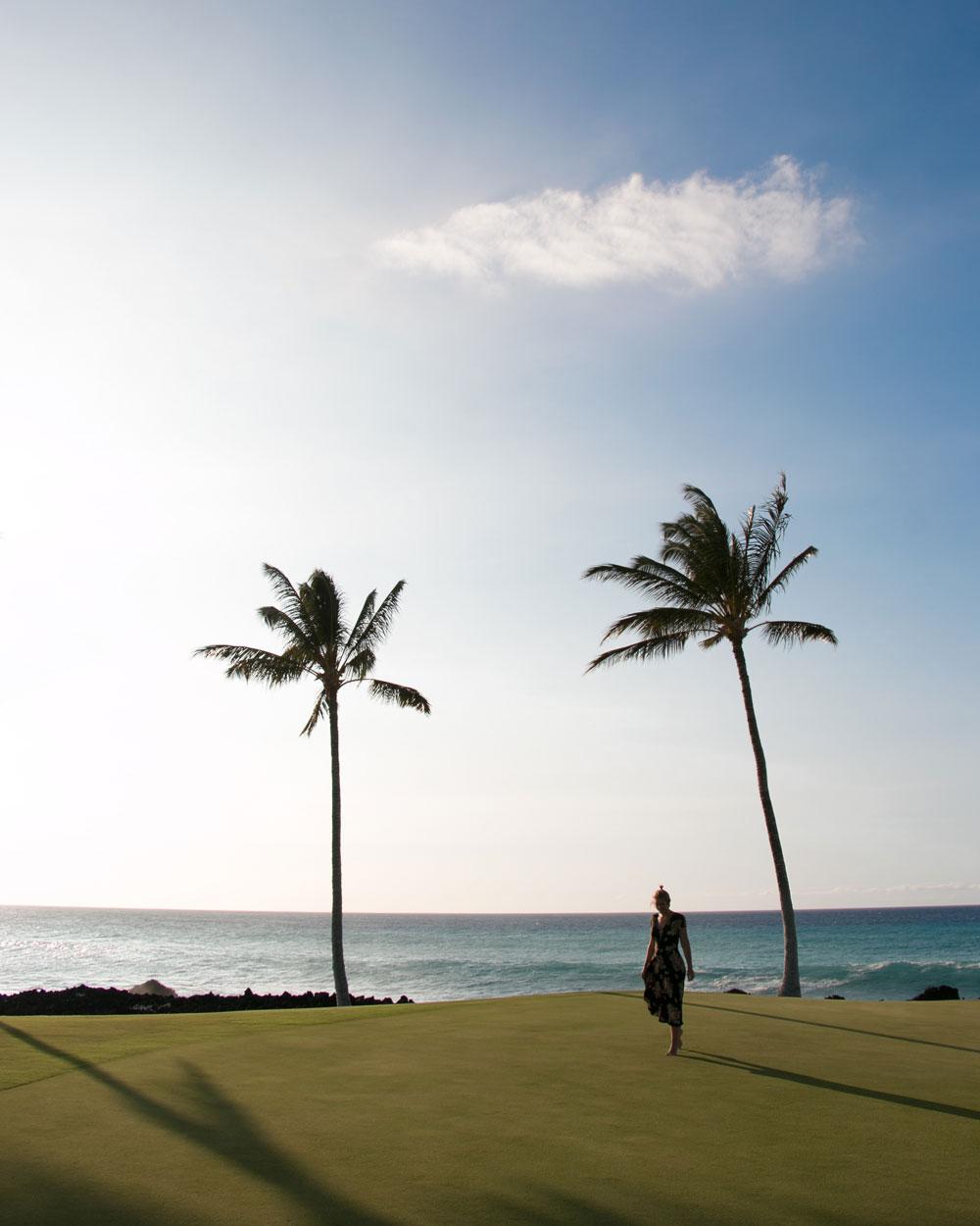 Hilton Waikoloa Hawaii Island