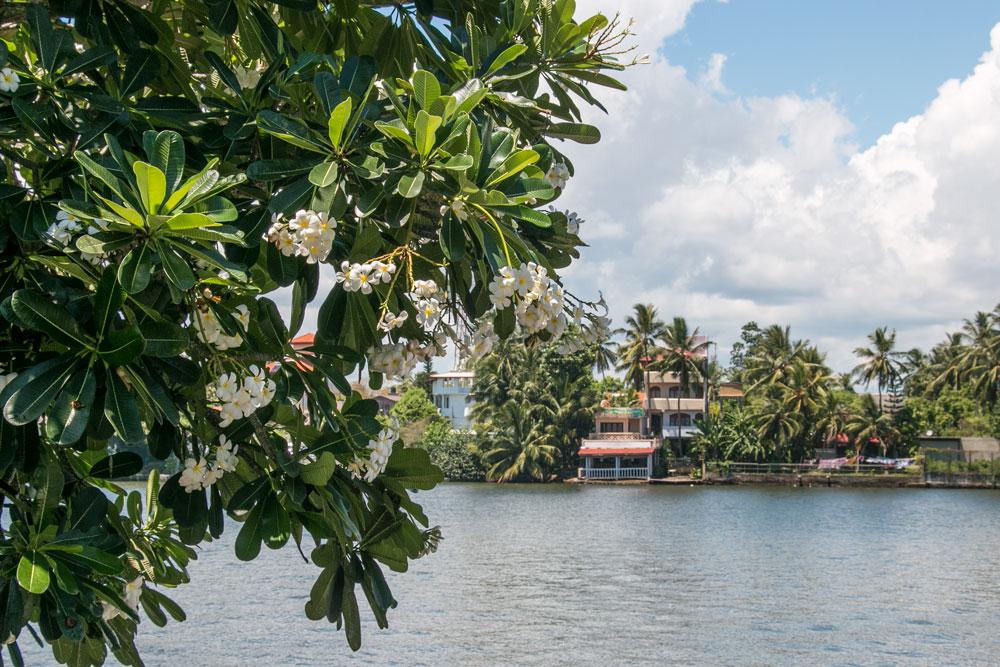 Centara-Ceysands-Sri-Lanka_15.jpg