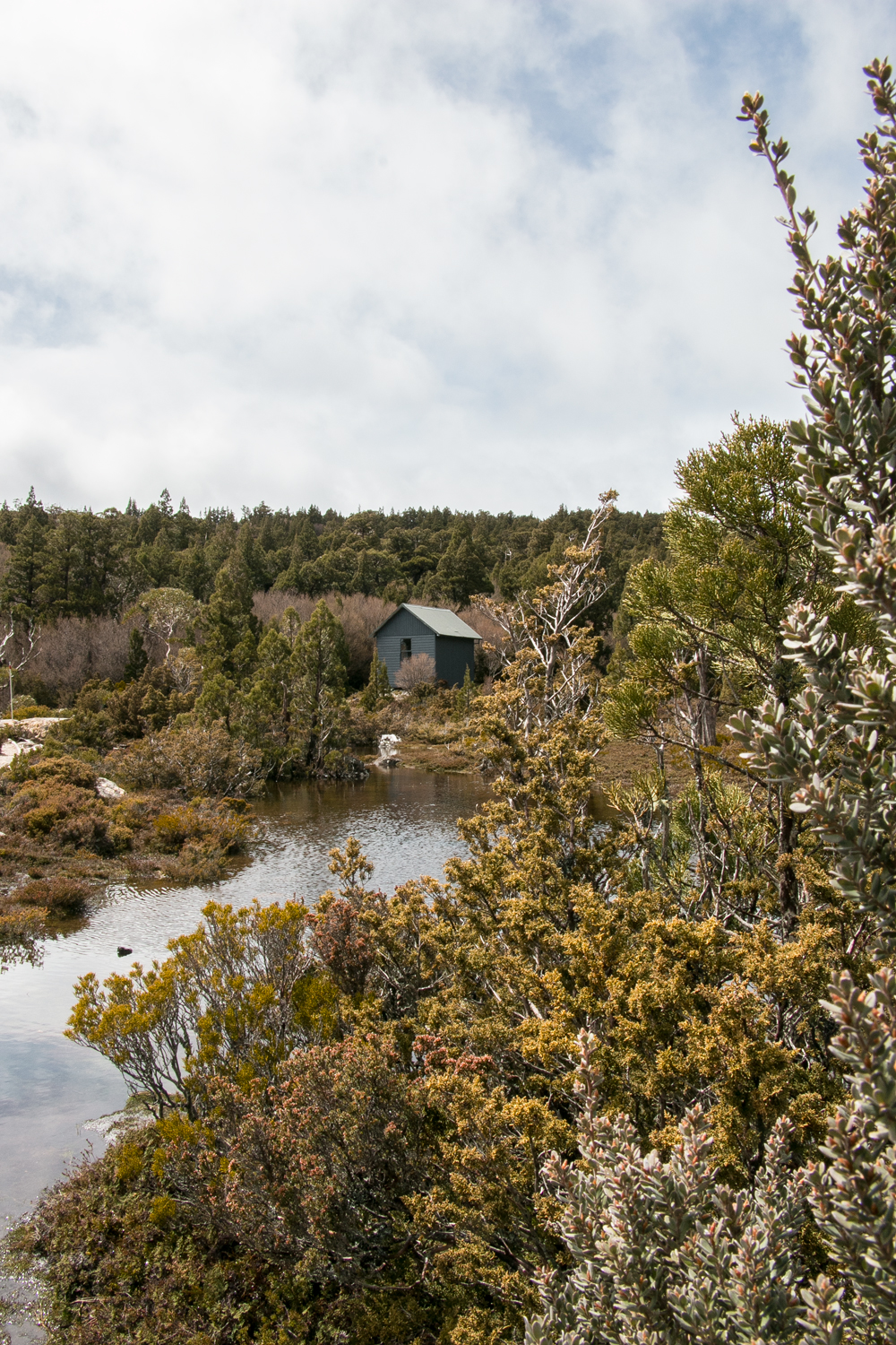 One of the many emergency hiking refuge huts around Cradle Mountain