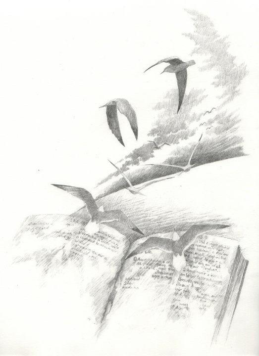 'Gospels'