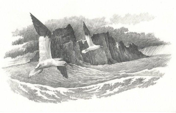 'Guga Stone' 2