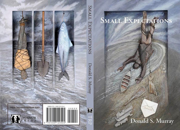 'Small Expectations' Book Cover