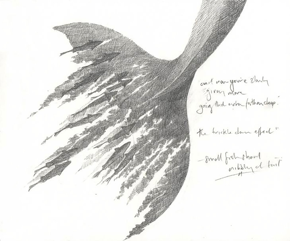 'Whalefall - Fluke' from  Beasties  collaboration with poet  Isobel Dixon