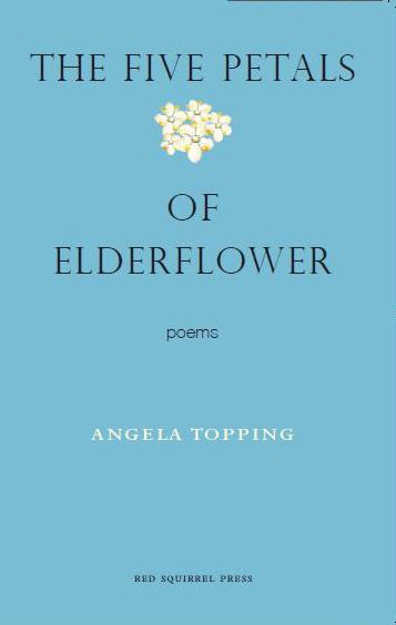 petals-cover.jpg