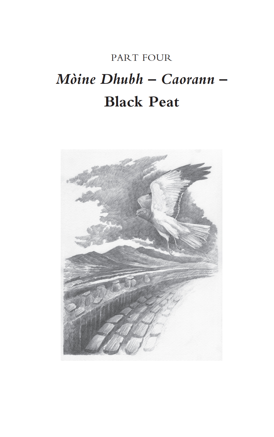 black peat book final.jpg