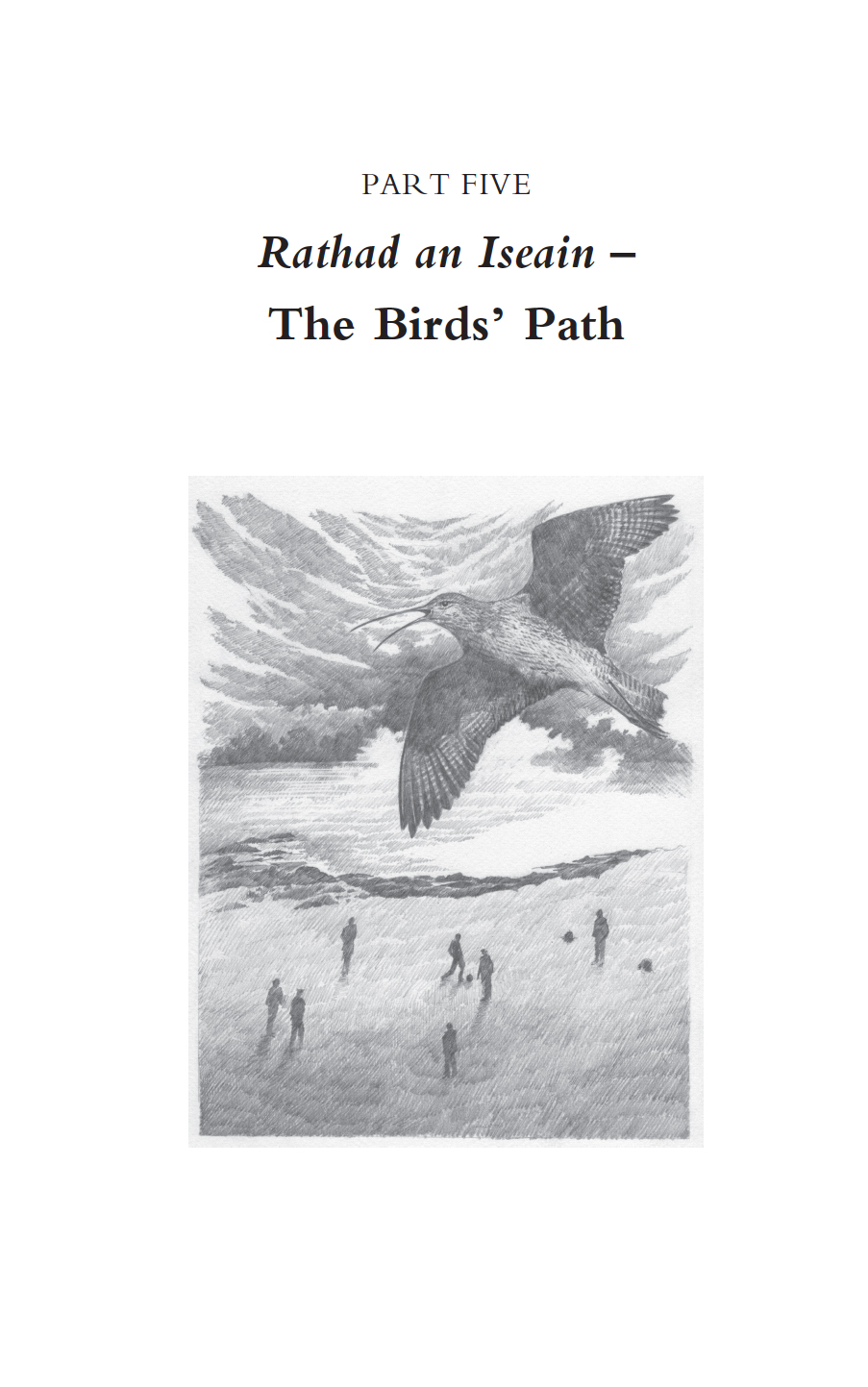 bird's path final book.jpg