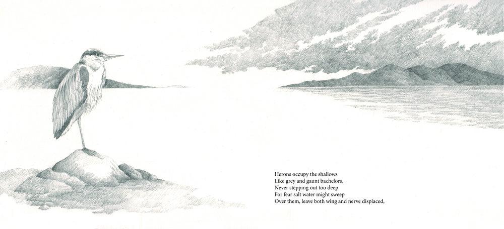 heron book image 1.jpg