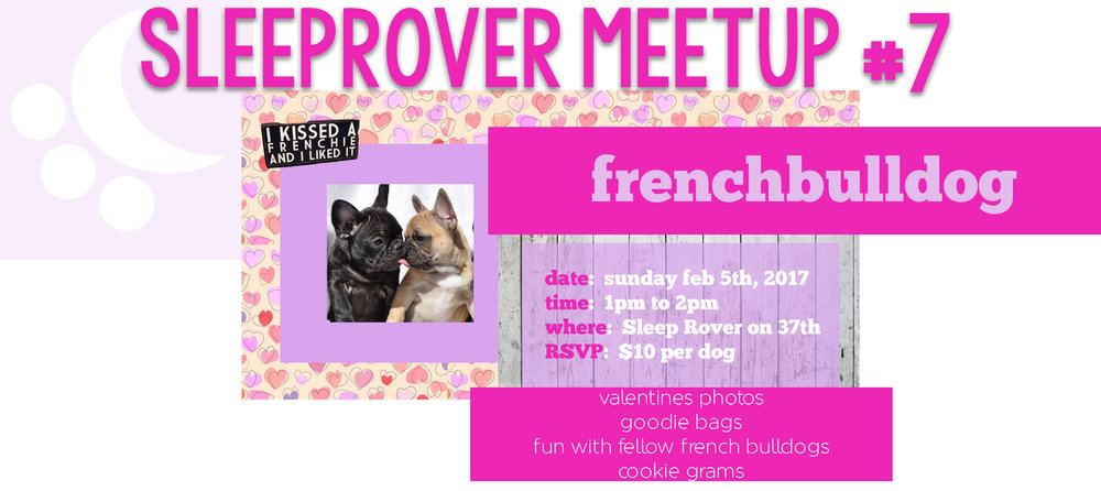 First Meet Up of 2017 - I kissed a Frenchie, and I liked it!  SRMeetup#7