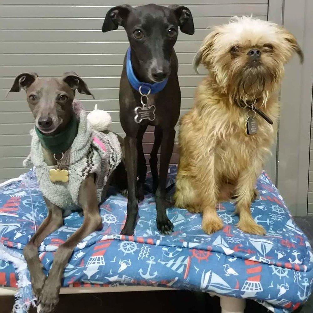 Hugo, Wybie & Lincoln