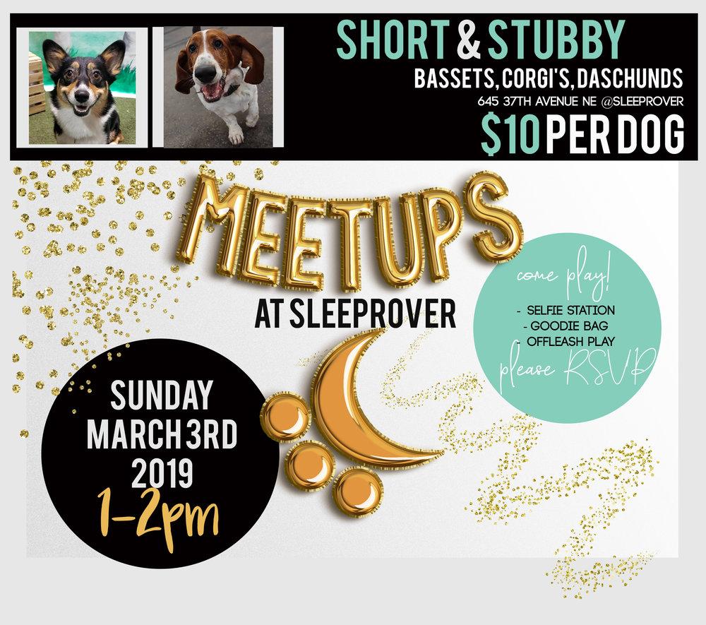 Meetup 2019 ShortStubby March.jpg